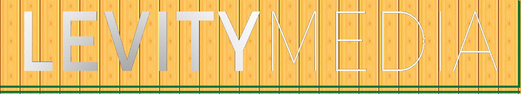 Levity Media Logo
